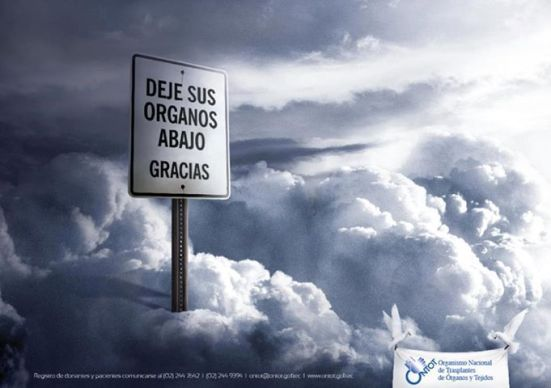 Dona_Organos